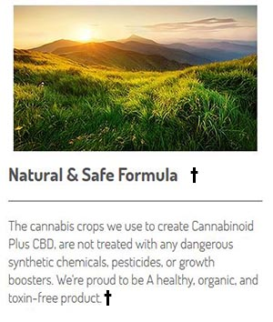 Optimal Choice CBD Ingredients